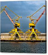 Pair Of Cranes Canvas Print
