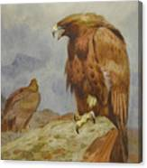 Pair Of Golden Eagles By Thorburn Canvas Print