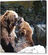 Pair Of Grizzly Bears Biting At Each Other Canvas Print