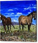 Pair Of Horses Painting Canvas Print