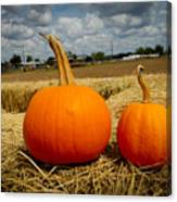 Pair Of Perfect Pumpkins Canvas Print