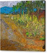 Paisaje - Chile - Campo 1 Canvas Print