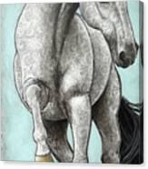 Paisleylusian Canvas Print