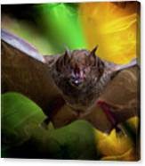 Pale Spear-nosed Bat In The Amazon Jungle Canvas Print