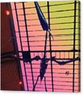 Paleo Flight Canvas Print
