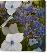 Paler Shades Of Blue Canvas Print