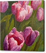 Palette Tulips Canvas Print