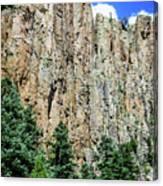 Palisades - Cimarron Canyon State Park - New Mexico Canvas Print