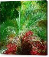 Palm And Azaleas Canvas Print
