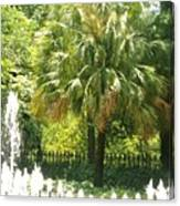 Palm And Fountain Canvas Print