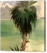 Palm At Horseshoe Cove Canvas Print