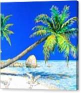 Palm Beach Number Five Canvas Print