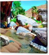 Palm Canyon Park Canvas Print