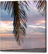 Palm Courtain II Canvas Print