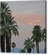 Palm Desert Sunset  Canvas Print