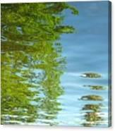 Palm Flect IIi Canvas Print