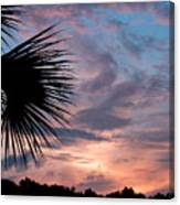 Palm Frond At Dusk Canvas Print