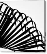 Palm Frond Black And White Canvas Print