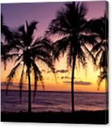 Palm Horizons Canvas Print