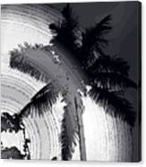 Palm In Grey Canvas Print