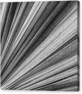 Palm Leaf Texture Canvas Print