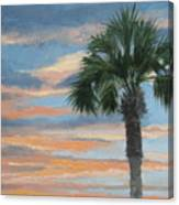 Palm Morning Canvas Print