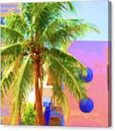 Palm Of Miami Canvas Print
