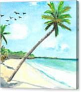 Palm Over Diani Beach Canvas Print