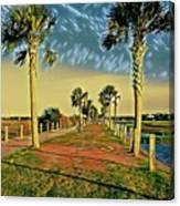 Palm Parkway Canvas Print