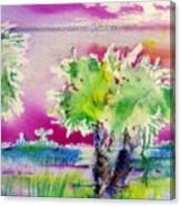Palm Sunrise Canvas Print