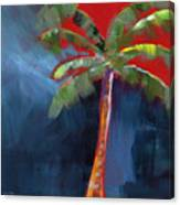 Palm Tree- Art By Linda Woods Canvas Print