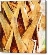 Palm Tree Bark Canvas Print