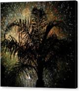 Palm Tree Fireworks Canvas Print