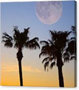 Palm Tree Full Moon Sunset Canvas Print