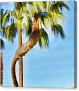 Palm Tree Needs A Chiropractor Painterly I Canvas Print