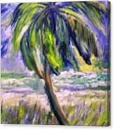 Palm Tree On Windy Beach Canvas Print