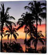 Palm Tree Silhouettes Canvas Print