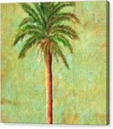 Palm Tree Studio 3 Canvas Print