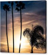 Palm Tree Sunset Silhouette Canvas Print