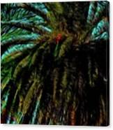 Palm Trees 40 Version 2 Canvas Print