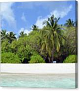 Palm Trees And Exotic Vegetation On The Beach Of An Island In Maldives Canvas Print