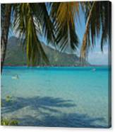 Palm Trees Cast A Shadow In Blue Water Canvas Print