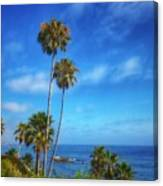 Palm Trees On The Pacific Canvas Print