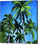 Palm Trees Under A Blue Sky Canvas Print