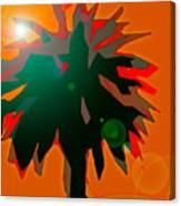 Palms 5 Canvas Print