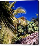 Palms All Around 2 Canvas Print