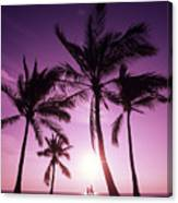 Palms And Pink Sunset Canvas Print