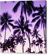 Palms And Purple Sky Canvas Print