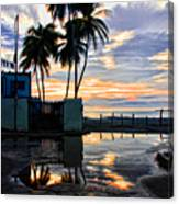 Palms And Sunshine Canvas Print
