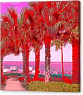 Palms In Red Canvas Print